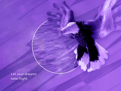 Creative Flight artistic direction montage digitalart digital creative visual art direction design