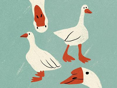 Geese texture shape procreate illustrator 2d design illustraion flat digital illustration digitalart art