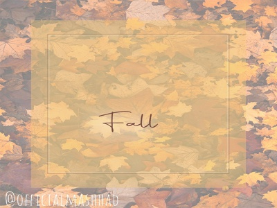 Fall flat vector art inspiration typography photoshop minimal instagram post illustration design