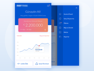 Financial Dashboard app ux ui reports reporting report design mobile  money interaction financial  finances  graph business finance app finance dashboard chart