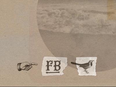 Stowawayvintage social facebook twitter vintage grunge antique illustration bird