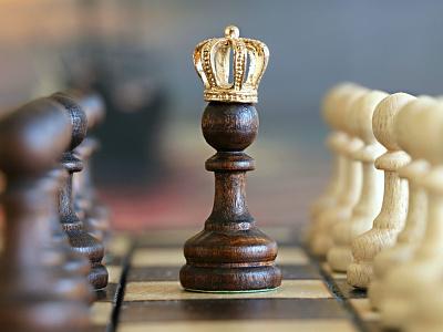 Libros de Aperturas de Ajedrez chess books ajedrez chess