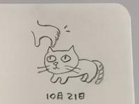 I Got A Kitten