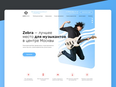 Welcome page for ZEBRA AUDIO web site gladkovcompany guitar landing design homepage landingpage black zebra music ux ui web development web design website design website web