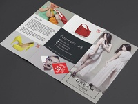 Trifold Product Promotion Brochure