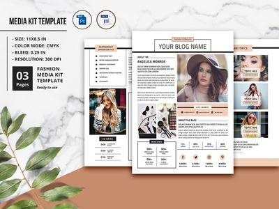 Electronic Press Kit Designs Themes Templates And Downloadable Graphic Elements On Dribbble