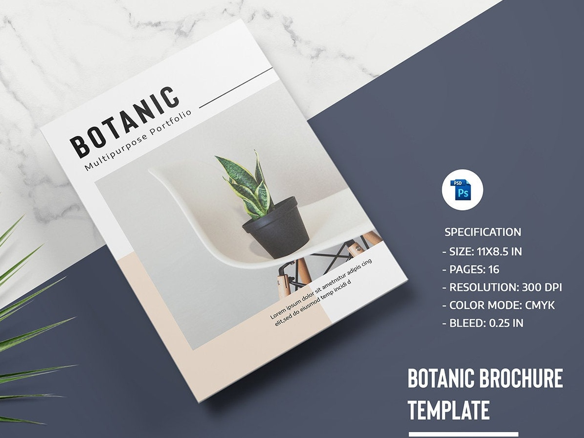 Photography Magazine Template template design magazine brochure photoshop template botanic botanical brochure professional portfolio brochure photography magazine multipurpose portfolio