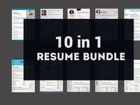 10 Clean Resume Template Bundle