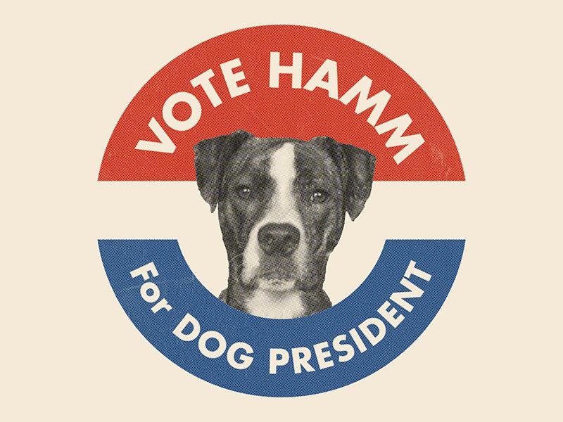 Hamm for Dog President propaganda red white and blue politics campaign retro jfk president election puppy dog