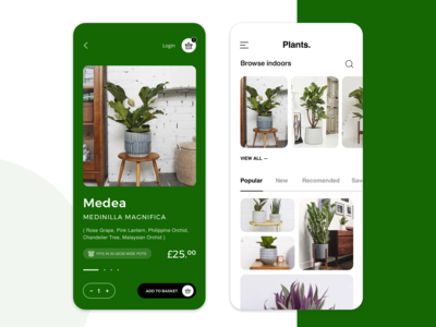 eCommerce Mobile App for Houseplants