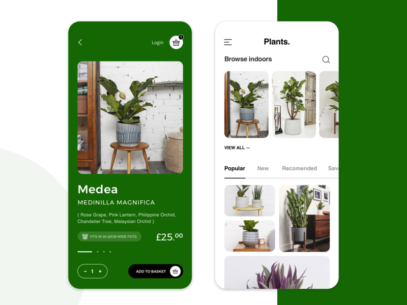 eCommerce Mobile App for Houseplants mobile app branding user experience mobile design visual design design process graphic design inspiration illustration design technique