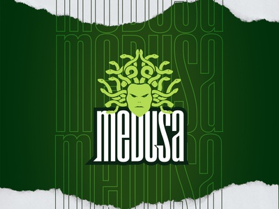 Medusa minimailst greek snake head medusa photoshop vector illustrator logo design esports sports gaming mascot logo graphic design