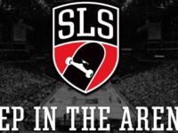 SLS 2013