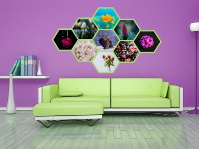 Interior Wall frame design illustration design
