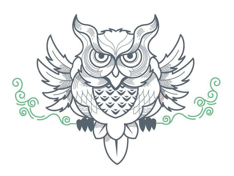 Earth day  owl outline illustration minimal bird ornamental