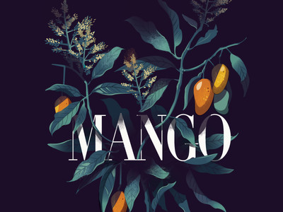Mango - Mystery Project  alphanso india flowering plant dark vector summer mango