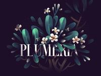 04 Plumeria
