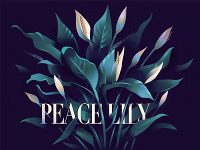 05 Peace lily indoor plants colorful purity flowers illustration series peace lily lily