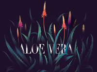 Aloe Vera - 06