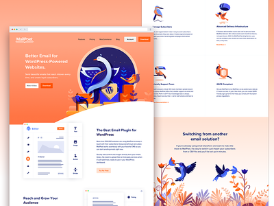 MailPoet - Web experience design direction story illustration product illustration birds story web delivery wordpress email