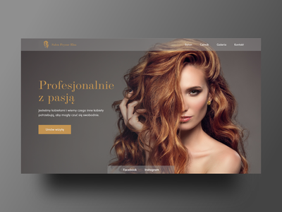 Women's hairdressing salon beauty poland hair salon design adobexd ui