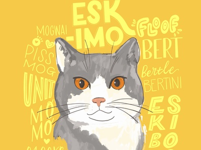 Another kitty with all the names pet illustration animal illustration letters lettering art handmade poster yellow homewares kitty illustration type design handlettering lettering cats animals type hand lettering colour typography hand drawn illustration