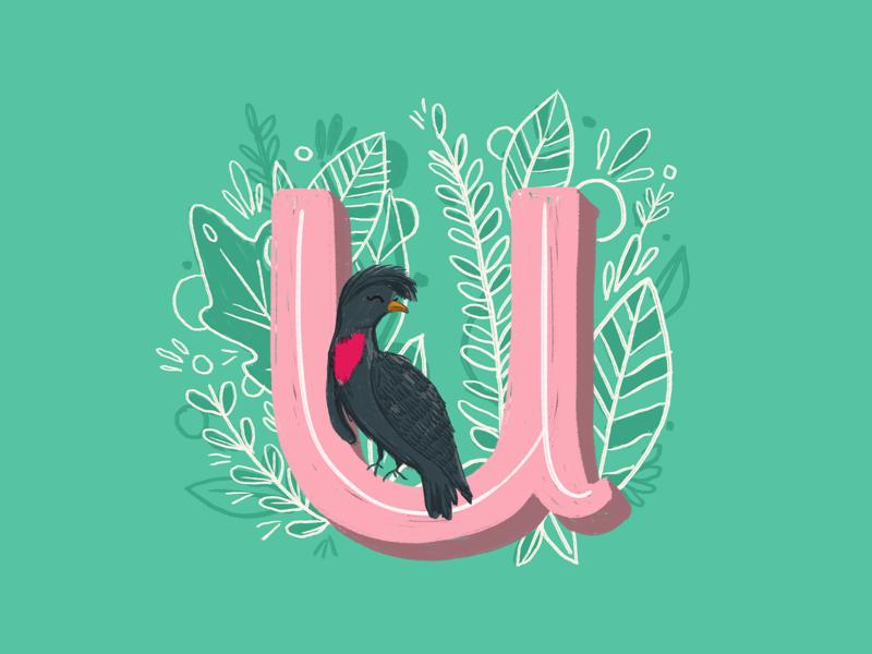 36 days of type - U nature animals leaves alphabet typography type hand lettering ipad pro hand drawn illustration birds