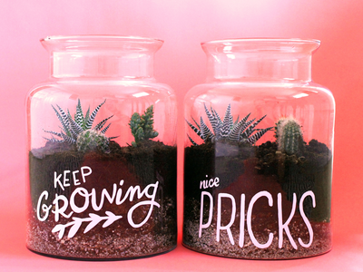 Hand lettered terrariums