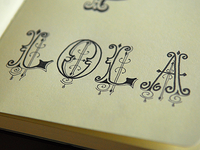 Lola Lettering