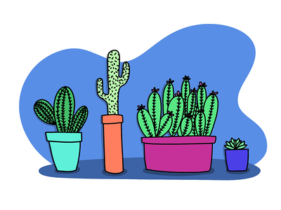 Succulents succulent procreate cartoon drawing illustration