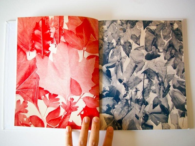 Touch and Detach book photography editorial