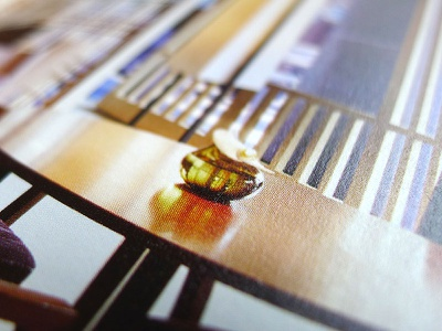The Ritz-Carlton, Kyoto Marketing tools hotel promotion pr brochure marketing sales