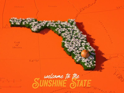 Welcome to the Sunshine State 2d animation 2d after effects illustration motion graphics motion design cinema 4d c4d 3d animation