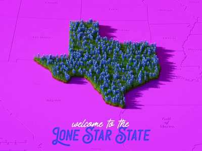 Welcome to the Lone Star State illustration 2d animation cinema 4d motion design 2d c4d 3d motion graphics after effects animation