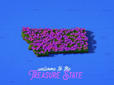 Welcome to the Treasure State design illustration 2d animation after effects motion design motion graphics animation cinema 4d c4d 3d