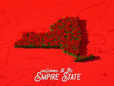 Welcome to the Empire State design illustration 2d animation after effects cinema 4d c4d 3d motion design motion graphics animation