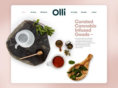 Olli photography art direction web design development logo branding design