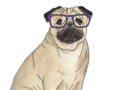 Milo the Pug pug digital art watercolour illustration dog
