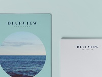Blueview Branding Collateral