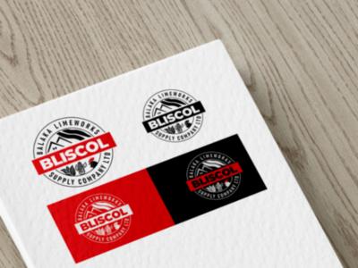 Bliscol logo flat abstract clean free visual communication graphic design template branding mockup visual design creative identity corporate illustration photoshop illustrator businesscard logo