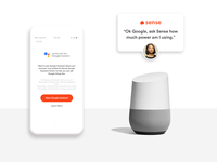 Sense and Google assistant integration