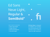 Ed Sans Sample