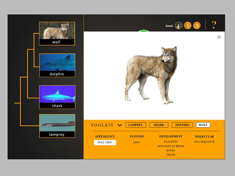 All In The Family Evolution Game Interface web interactive ui education