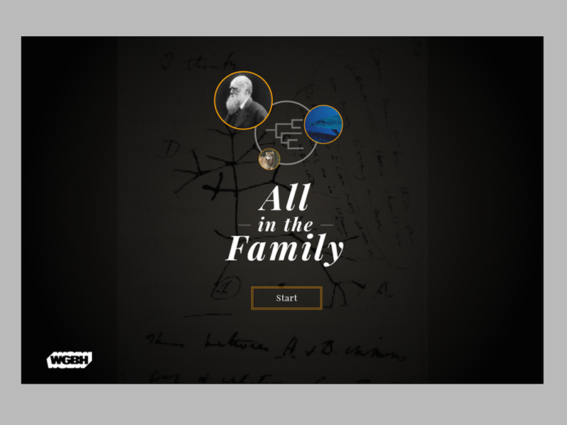 All In The Family Evolution Game landing screen web interactive ui education