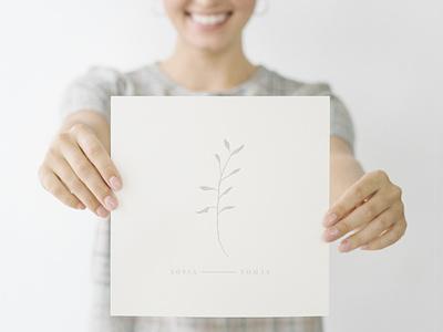 UPDATED - Laurels, Wreaths, Banners Graphics botanical branding logo illustration design organic digital illustrations hand drawn graphics
