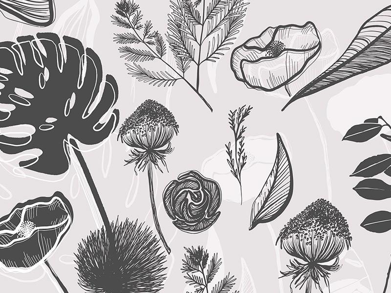 Botanical Garden Illustration Vector Set hand drawn plants organic digital graphics illustrations vectors botanicals