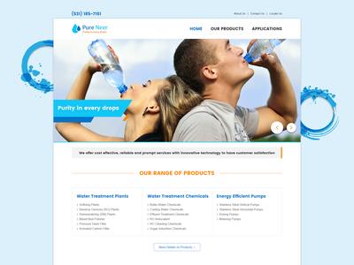 Pureneer Website Design