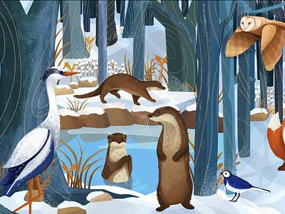British Wildlife illustration wildlife illustration animal illustration book illustration illustrations design illustration art illustration illustrator