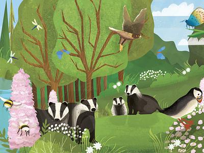 British Wildlife SUMMER Part 1 digital painting drawing digital illustration digital art desinger book illustration illustrations design illustration art illustration illustrator