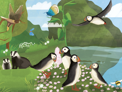 British Wildlife SUMMER Part 2 digital painting drawing digital art digital illustration digital desinger book illustration illustrations design illustration art illustration illustrator